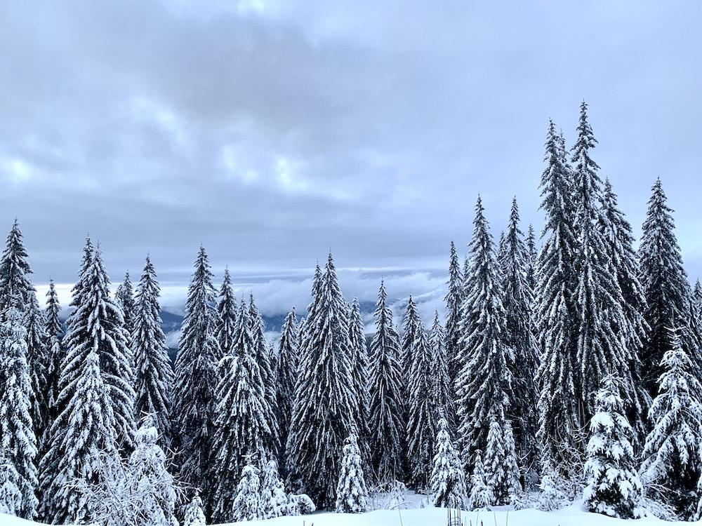 ski la Rânca